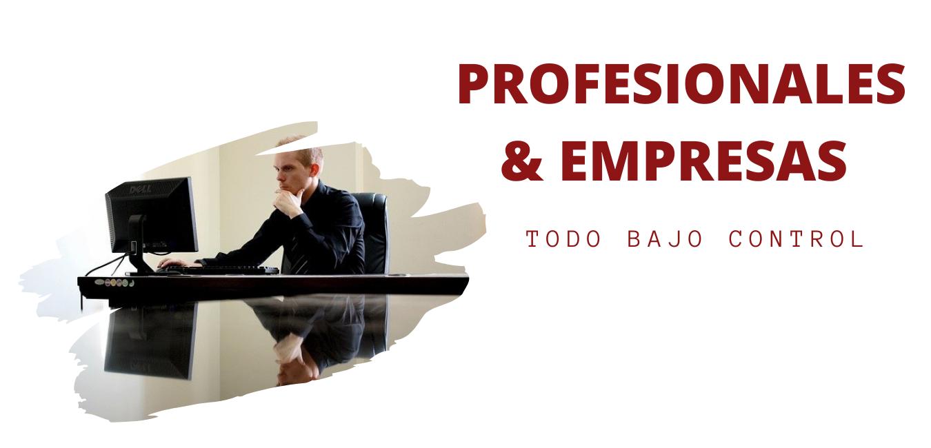 PROFESIONES Y EMPRESAS